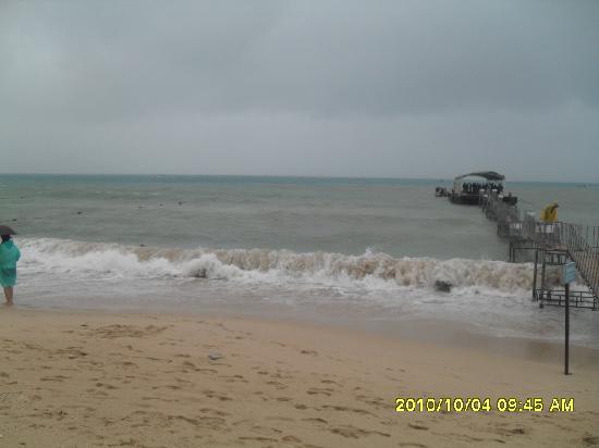 Sanya Coral Reef National Nature Reserve : SAM_2352