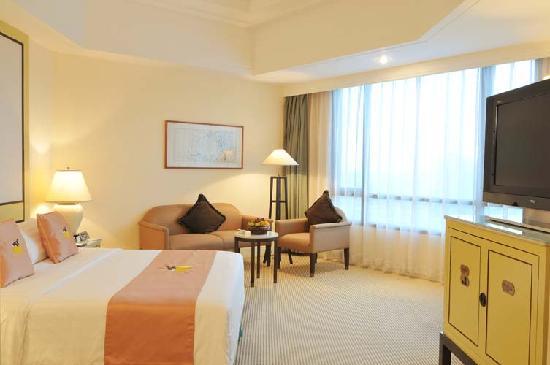 Hainan Junhua Haiyi Hotel: 君华商务房