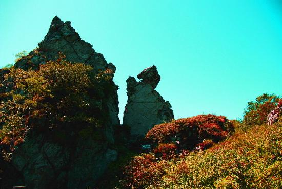 Shennongjia, China: 湖北神龙架飞跃神龙