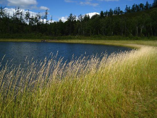 Внутренняя Монголия, Китай: 天池边,草是主角。
