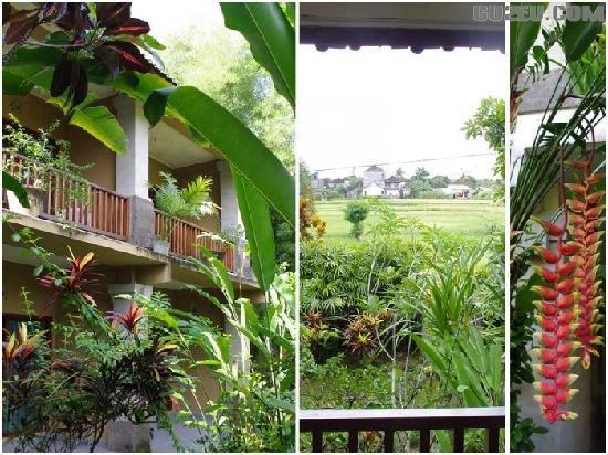 Green Field Hotel & Restaurant : 20110107_95e3003206f8c138eb2bMmtWfReotw7g