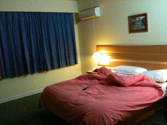 Home Inn (Shanghai Pudong South Road Shibo): 窗帘很简洁