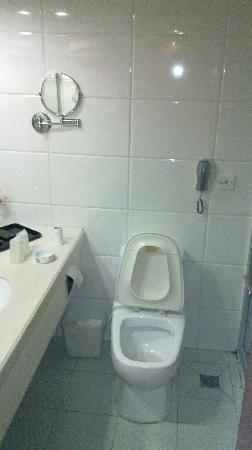 Sha Hu Binguan : 卫生间
