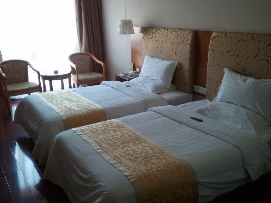 Cygnus International Hotel: 房间