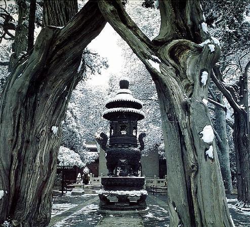 Beijing, China: 故宫里面