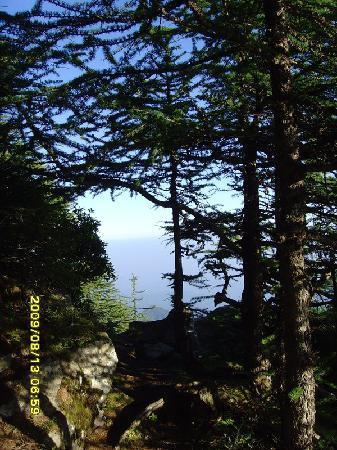Taibai Peak of Qinling Mountains: p_large_nzhx_033a0003c6312d0b