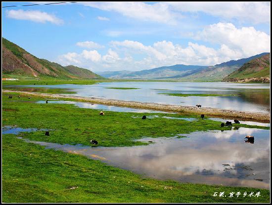 Zhaxika Grassland : 扎溪卡草原