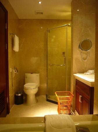 Dingli International Hotel: 卫生间