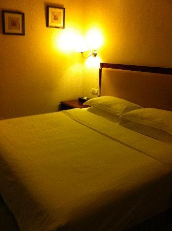 Bailuzhou Lake View Hotel: 房间内景