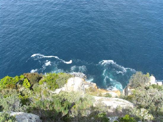 Αυστραλία: Freycinet 国家公园 Cape Tourville
