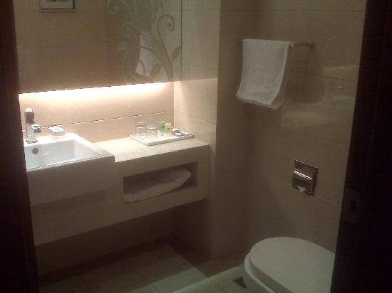 Sanwei Hotel: 卫生间