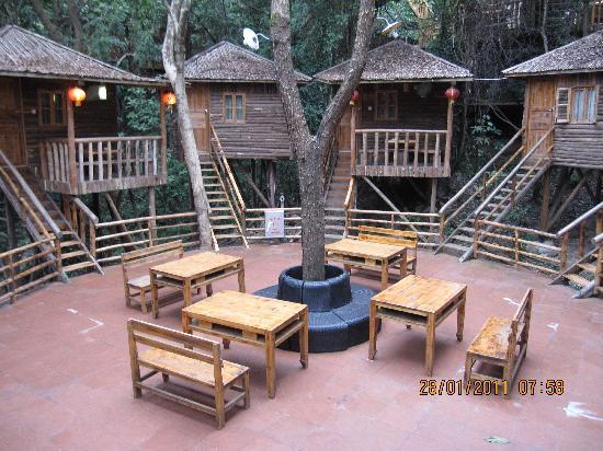 Jiuzhou Resort (Yingde  Yingde Tianmengou): 树上温泉 032