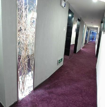Brisbane Sunshine  Hotel: 14