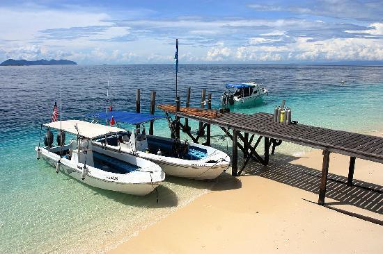 The Reef Dive Resort: IMG_1359