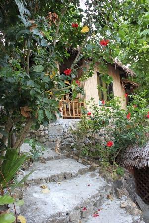 Chunut House: 这是我们住的小木屋!绿树环绕~