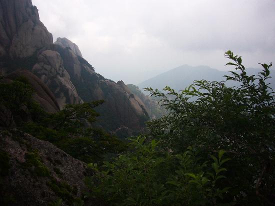 Jiuhua Mountain: 能看到密密麻麻的人吗