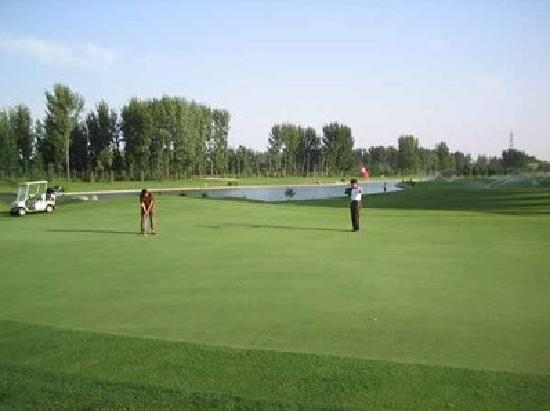 Qingdao International Golf Course : 未命名