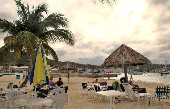 St. Croix Water Sports Center : 美丽的海滨 就在我们的酒店旁