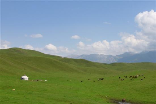 Tacheng-bild