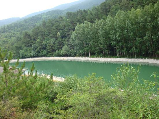 Jinzhong, China: 树林,龙泉水