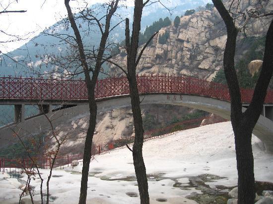 Changshou Bridge : 远眺长寿桥