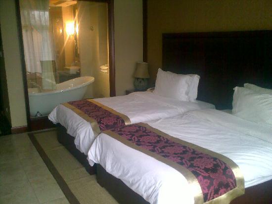 Zilongwan Hot Spring International Hotel : 标间