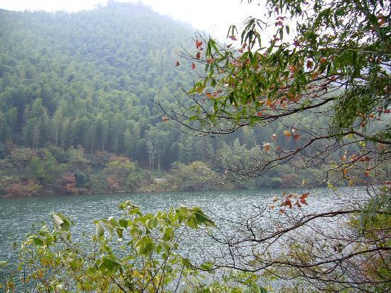 Tianmu Lake: P1100042