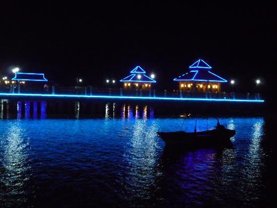 Baijin Holiday Hotel : 酒店夜景