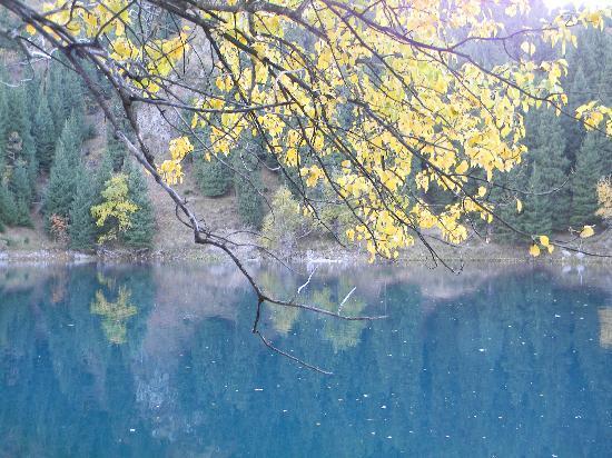 Tianchi Forest Park