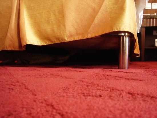 Zhaolong Hotel: 床下有垃圾