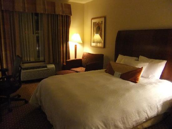 Hilton Garden Inn Rockford: DSCF0951