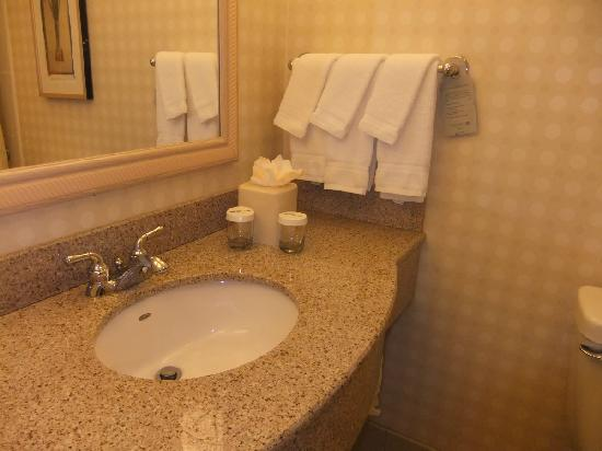 Hilton Garden Inn Rockford: DSCF0955