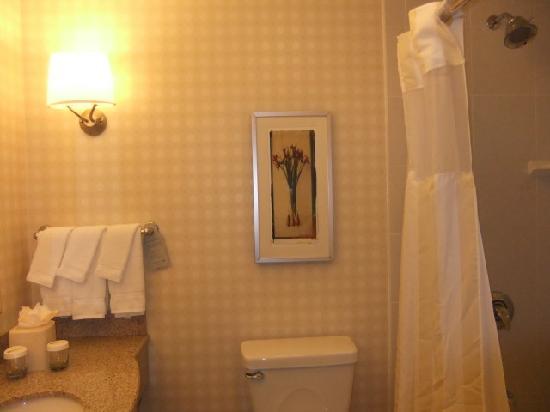 Hilton Garden Inn Rockford: DSCF0956