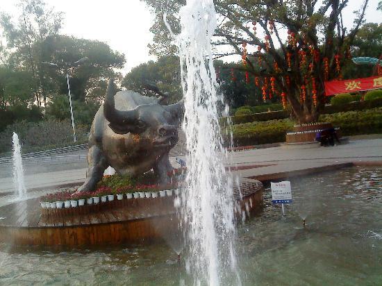 Fuzhou Jinniushan Park: DSC01724