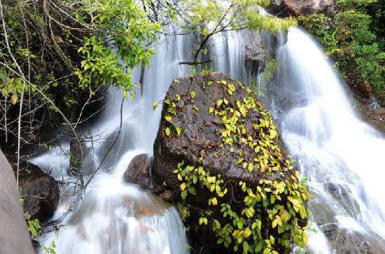 Baishui Village: 瀑布里的绿色