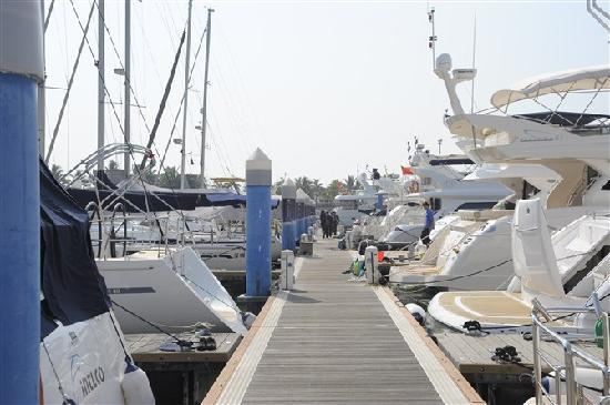 Dameisha International Yacht Club