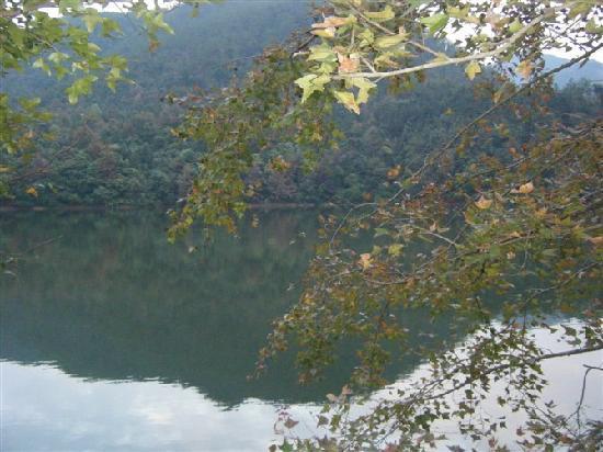 Shimen National Forest Park: 静水深流