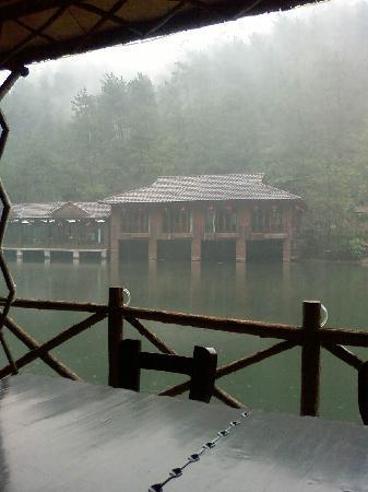 Lin'an Xiaotianmu Farm