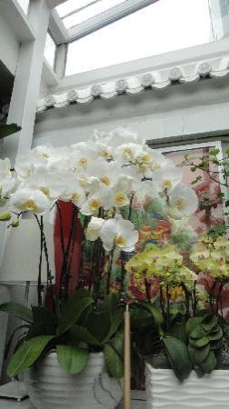 Peking Yard Hostel: DSC00510
