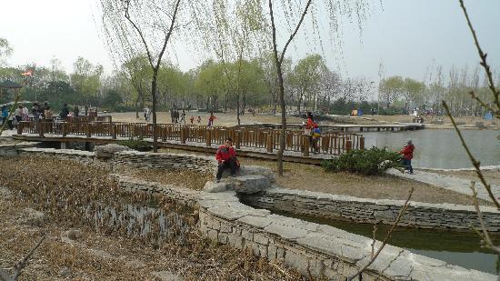 Haidian Park: 场景
