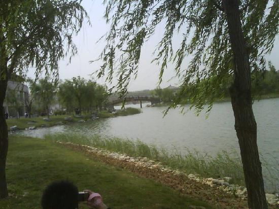 Qujiang Scenic Resort