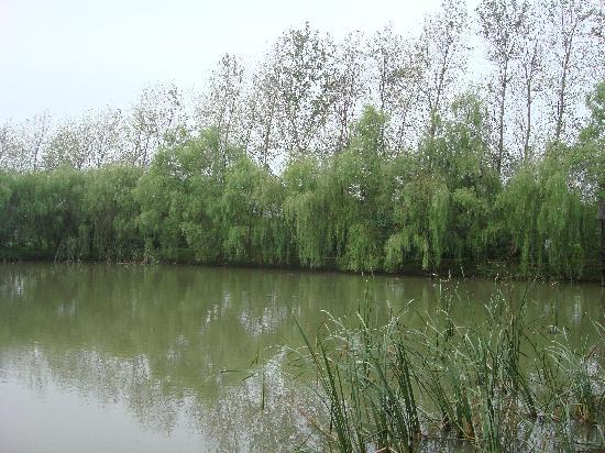 Jiangyan, China: 溱湖风光