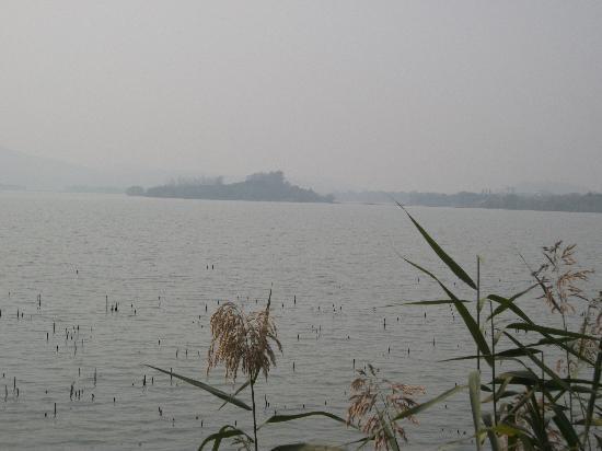 太湖花卉园