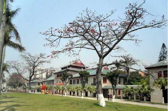 Xiamen, China: 凤凰花开90年