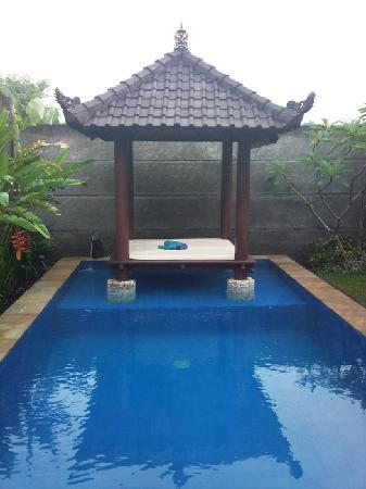 Villa Nian: 泳池和水上亭