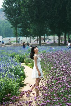 Zihaixiangdi Vanilla Art Manor : 徜徉在薰衣草中的我