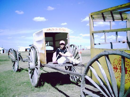 Inner Mongolia Racecourse