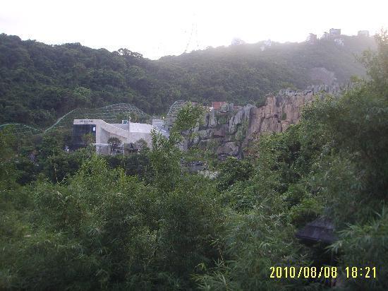 Shenzhen OCT Resort: 景区竹石