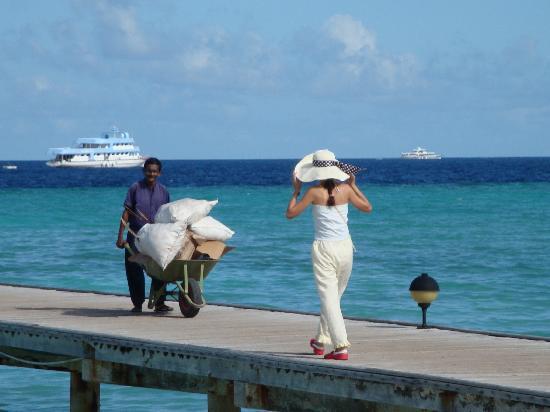 Maldive Victory: 双色大海不同肤色