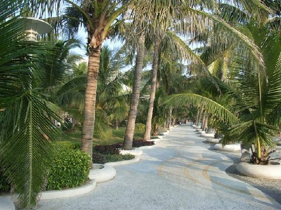 Тайшань, Китай: 经人工商业打造的绿道